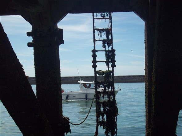 Photo:Inside East pier looking west (2)