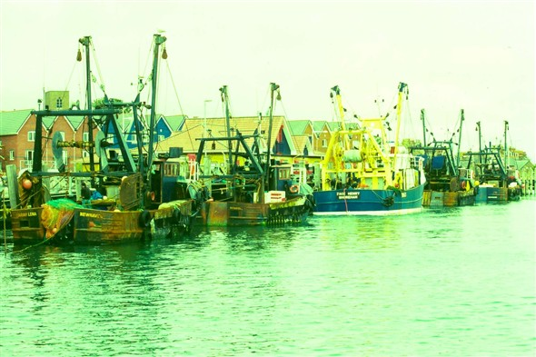 Photo:Fishing Boats