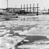 Page link: THE YEAR THE HARBOUR FROZE