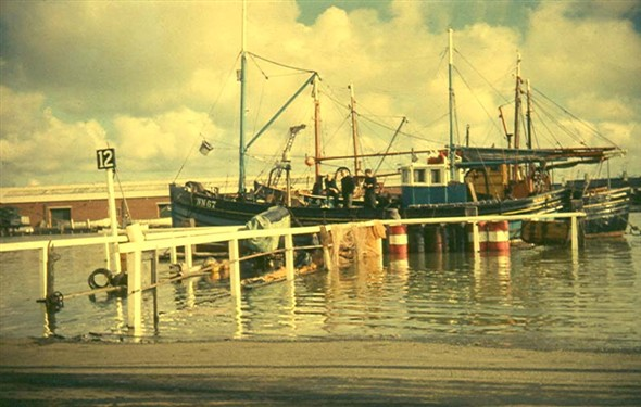 Photo:Trawlers berthed on stage 12