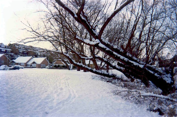 Photo:Valley Road area - winter 1998