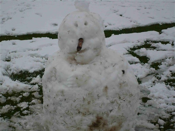 Photo:Snowperson - Fort Road